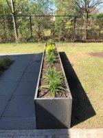 Cortenstaal plantenbakken Son en Breugel