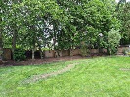 Aanleg beregening / renovatie achtertuin Dommelen